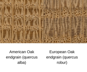 American vs european oak endgrain